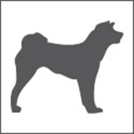 Immagine per la categoria Negozi Animali