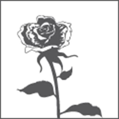 Immagine per la categoria Fiorai