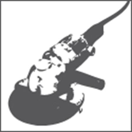 Immagine per la categoria Costruzione e Vendita Macchinari