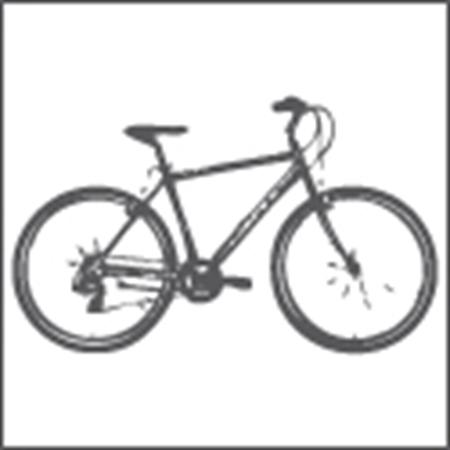 Immagine per la categoria Cicli e Motocicli