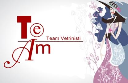Immagine di Team Vetrinisti